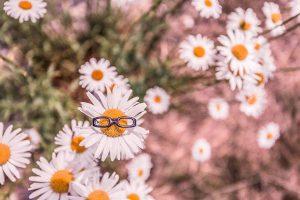 Fleur_lunettes démarche