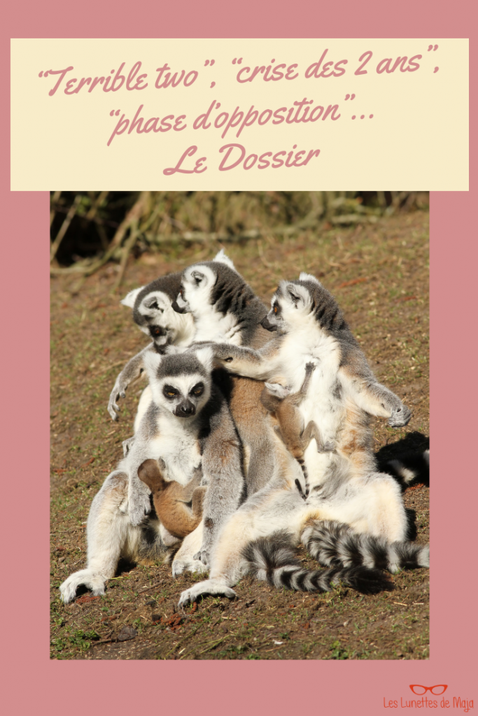 terrible two crise des 2 ans phase période d'opposition